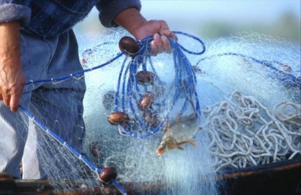 Pescador en el Parque Natural de la Albufera de Valencia